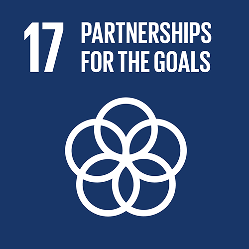17. Revitalize the global partnership for sustainable development